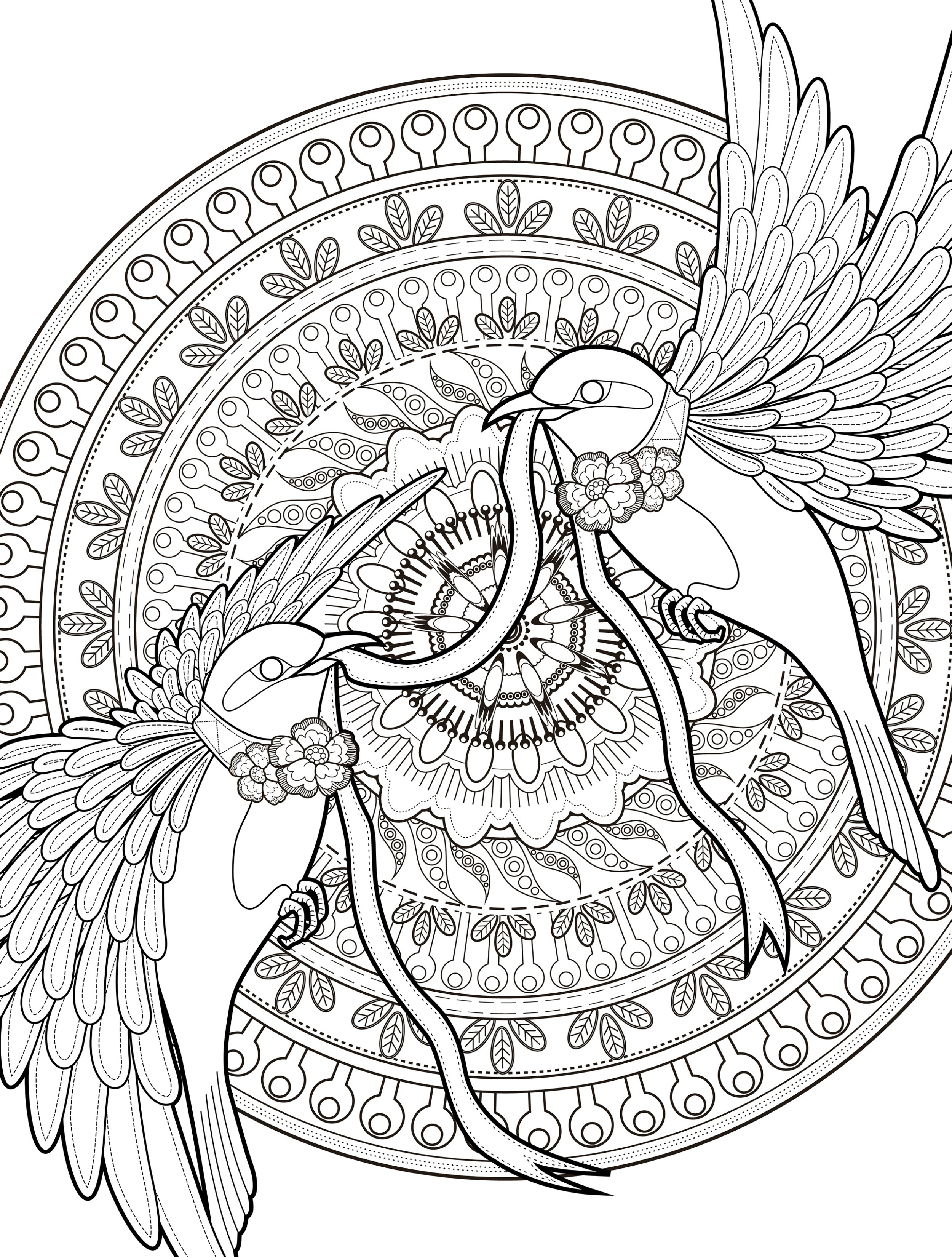 Adult Coloring Pages 24 More Free Printable Adult Coloring Pages Page 24 Of 25 Nerdy