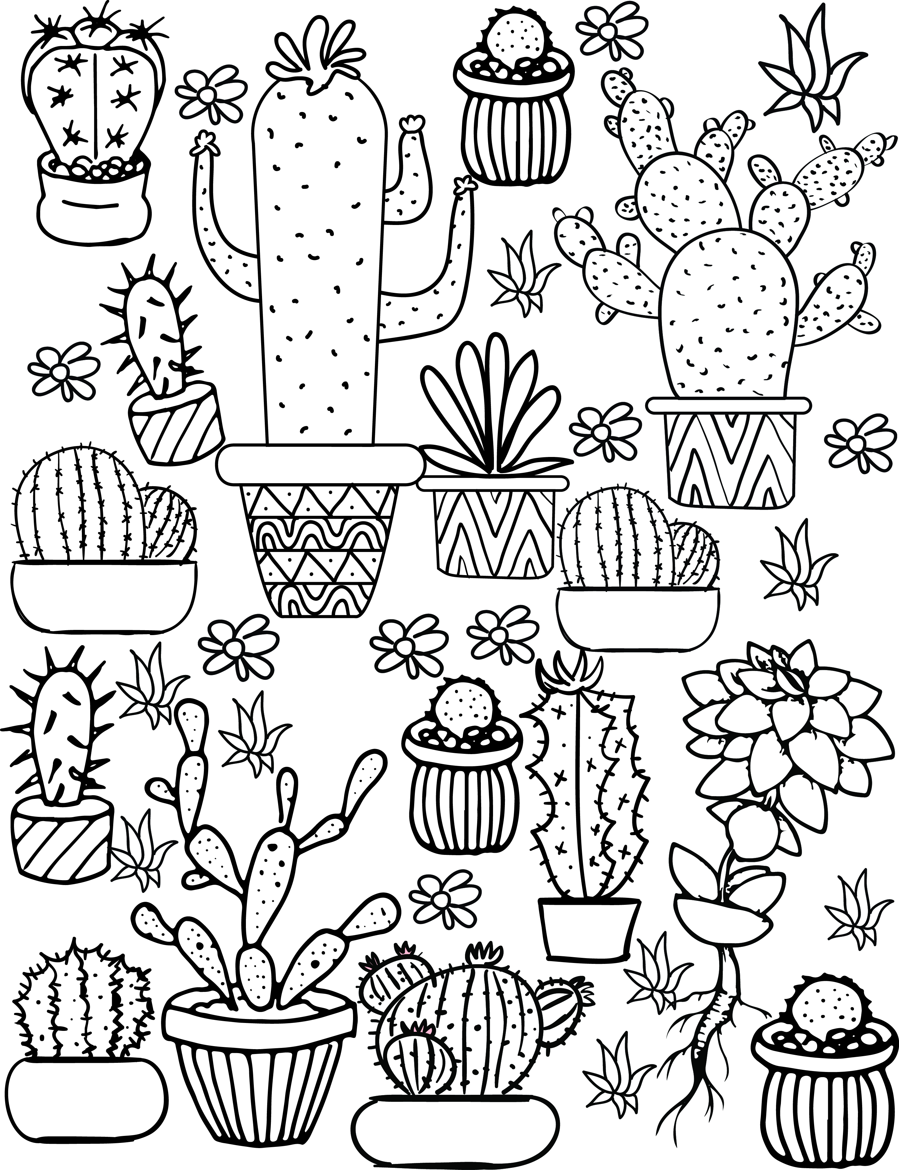 Adult Coloring Pages Cactus And Succulent Printable Adult Coloring Pages