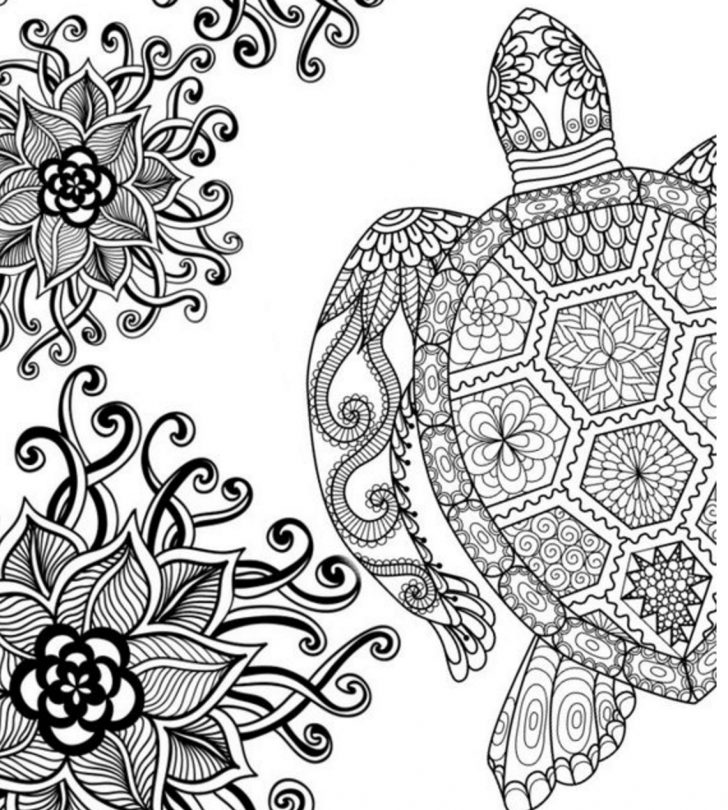 Adult Coloring Pages Coloring Page Free Adult Coloring Pages Today I Choose Joy Page