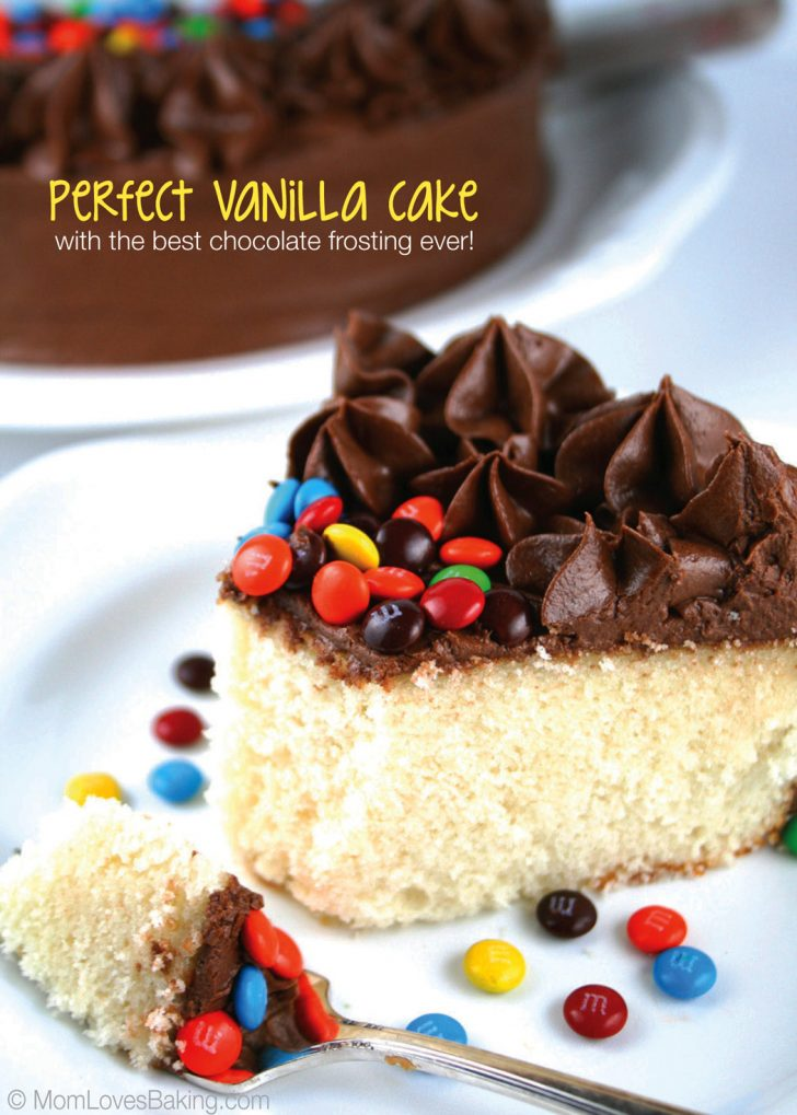 Birthday Cake Icing Recipe Perfect Vanilla Cake With The Best Chocolate Frosting Ever Mom