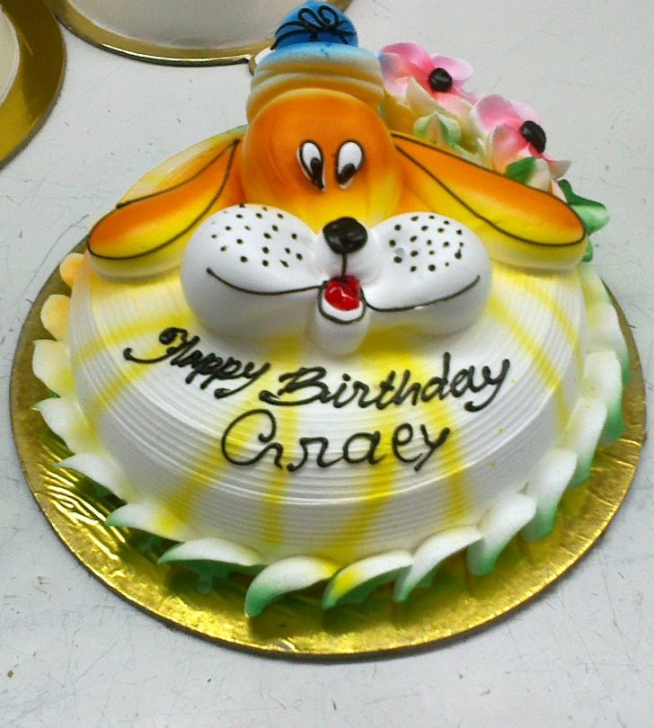 Birthday Cakes For Kids Shyam Swaad Cake Delivery In Lucknow Online Cookies Chocolates