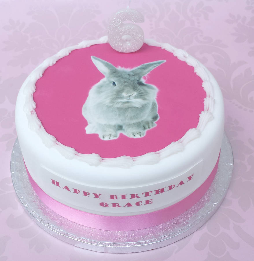 Bunny Birthday Cake Bunny Kitten Or Puppy Birthday Cake Decoration Kit Clever Little