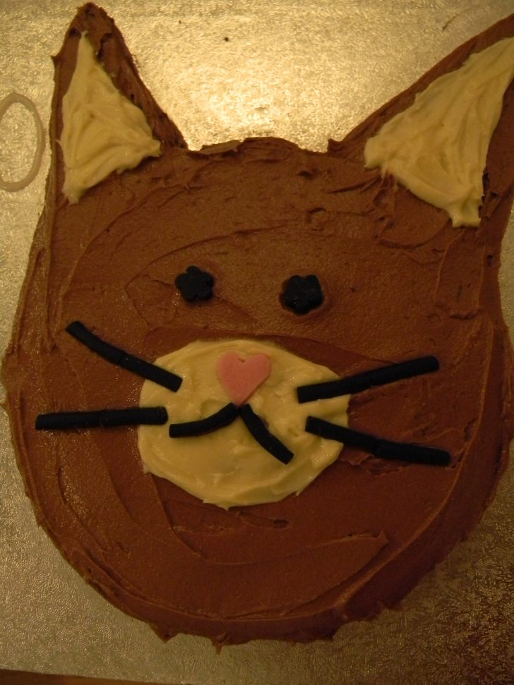 Cat Cakes For Birthdays Recipe Chocolate Cat Cake Its Purrrrrfect Etc Would Like To