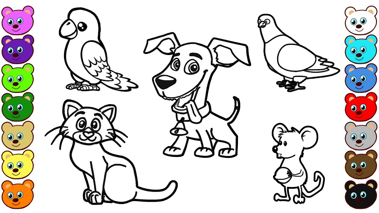 30 Brilliant Photo Of Coloring Pages Animals