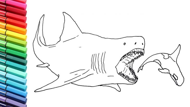 Coloring Pages Sharks Drawing And Coloring The Megalodon Megalodon Shark Color Pages For