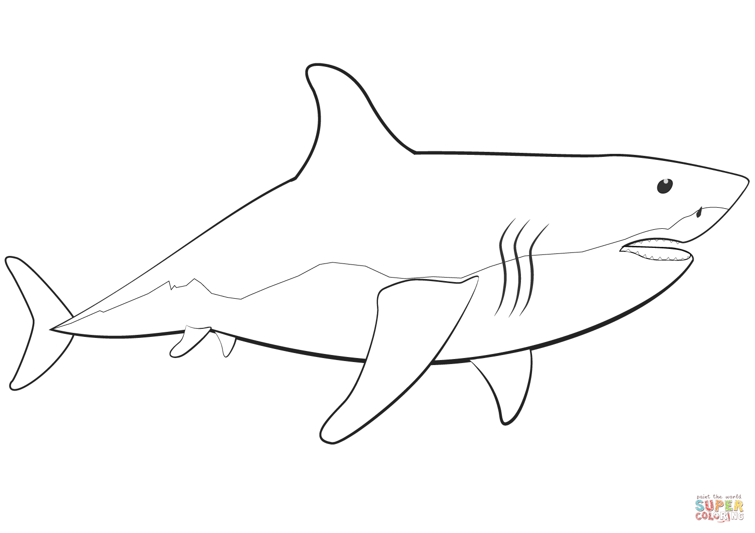 Coloring Pages Sharks Great White Shark Coloring Page Free Printable Coloring Pages