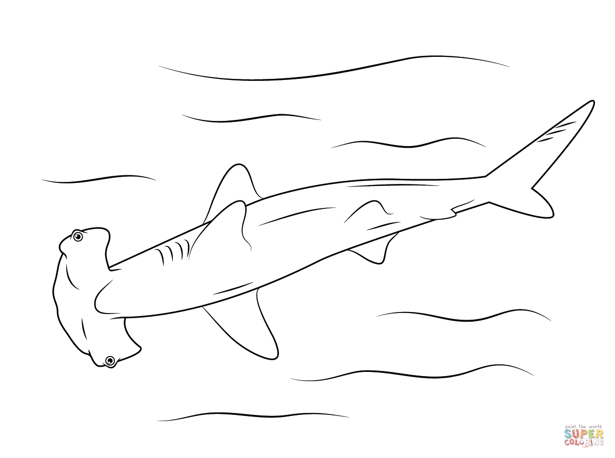 Coloring Pages Sharks Sharks Coloring Pages Free Coloring Pages