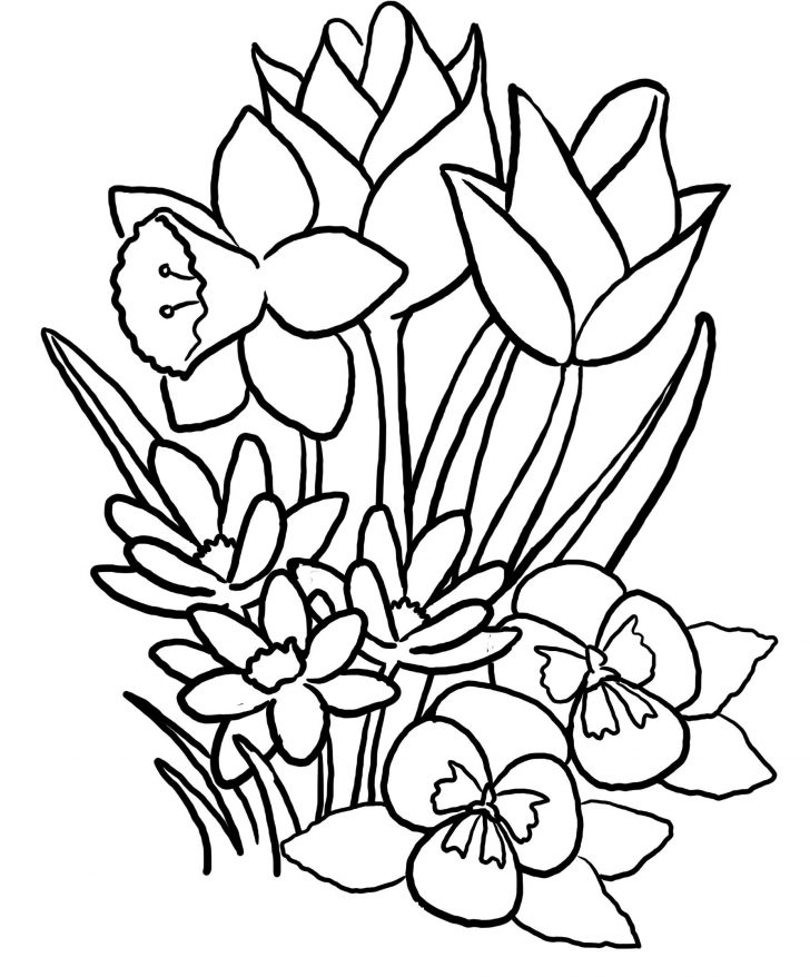 Coloring Pages Spring Easy Coloring Page Spring Pages Printable For Kids