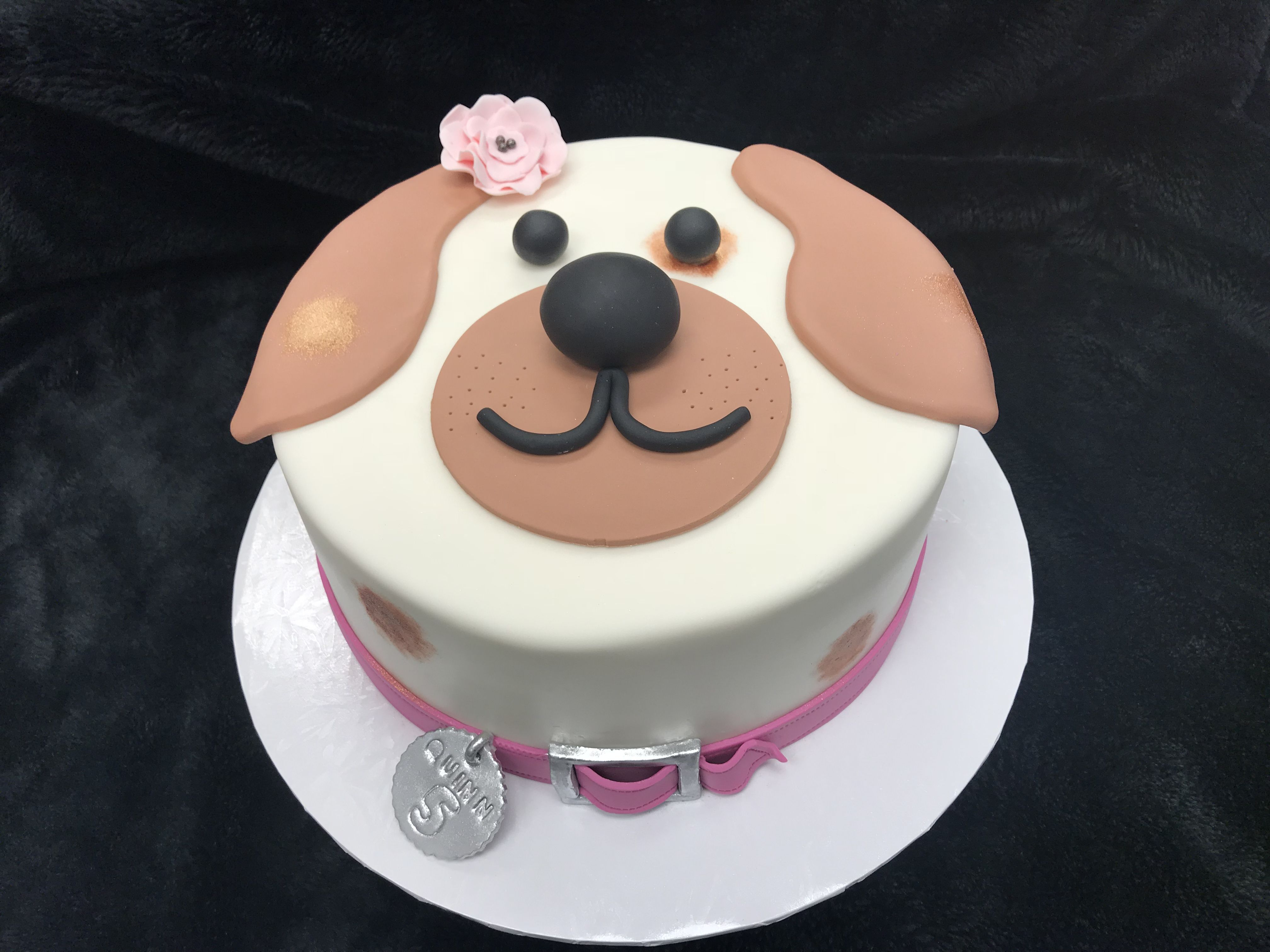 4032 X 3024 In 30 Brilliant Image Of Dog Themed Birthday Cake