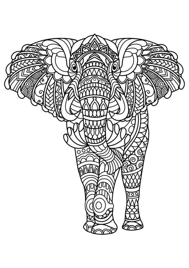 Elephant Adult Coloring Pages Coloring Page Fantastic Elephant Adult Coloringgesge Best Of