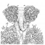 Elephant Adult Coloring Pages Coloring Pages Abstract Elephant Copy Adult Coloring Pages Free