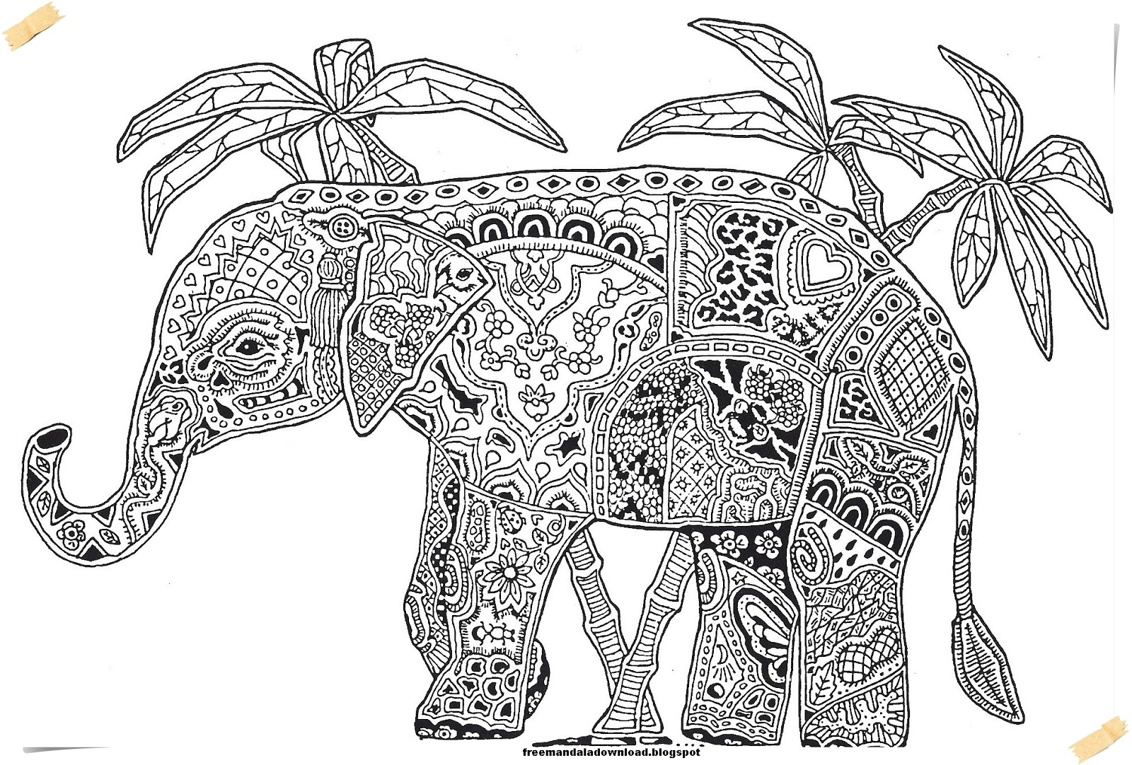Elephant Adult Coloring Pages Elephant Adult Coloring Pages Coloring Pages For Kids