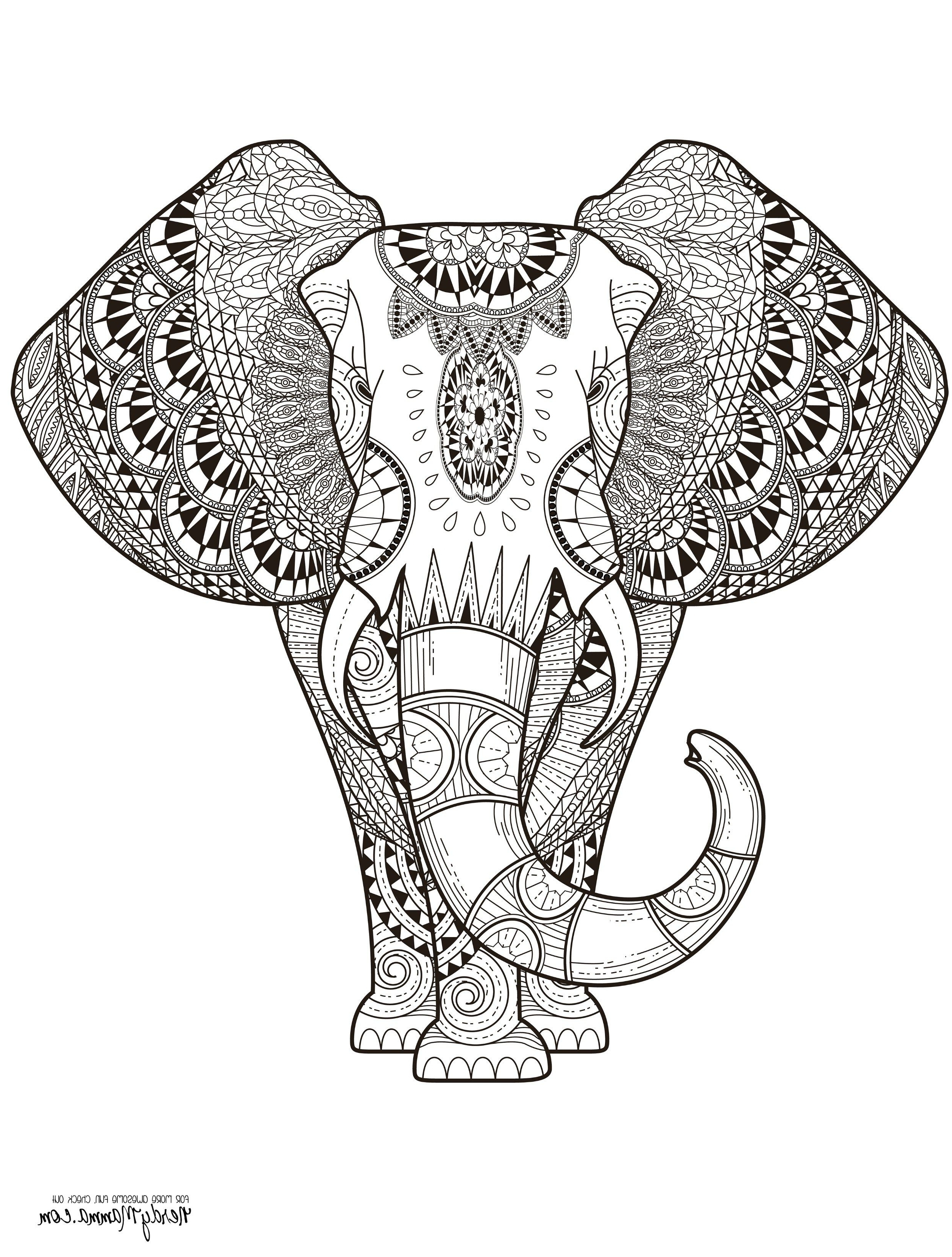 Elephant Adult Coloring Pages Elephant Adult Coloring Pages Crafted Here