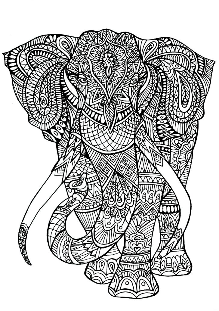 Elephant Adult Coloring Pages Elephant Patterns Elephants Adult Coloring Pages