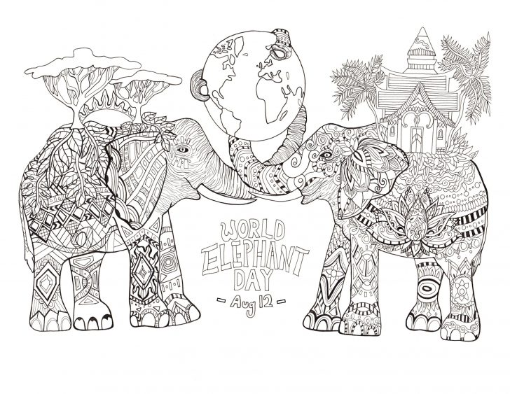 Elephant Adult Coloring Pages Elephants Coloring Pages For Adults