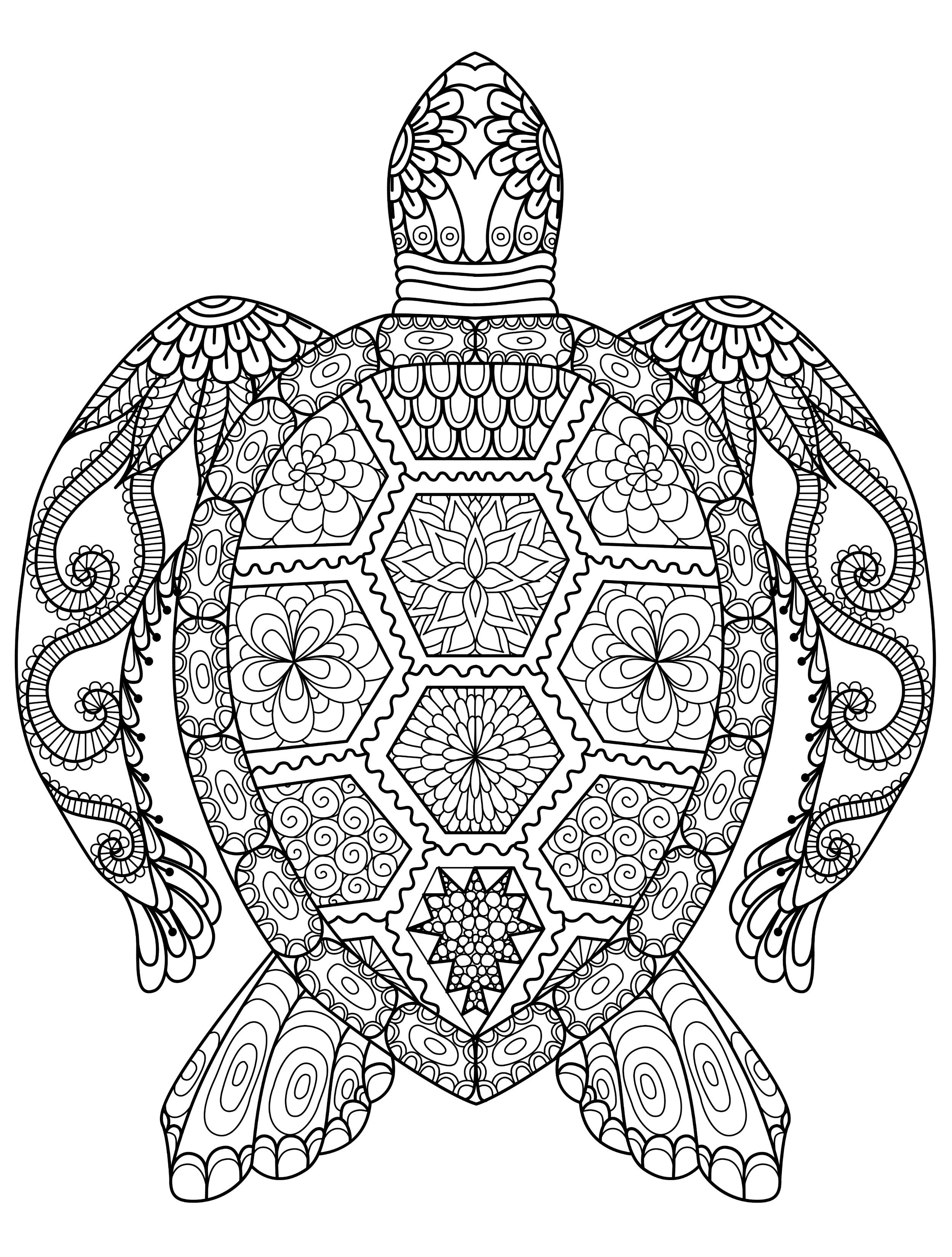 Elephant Adult Coloring Pages Inspirational Photos Of Elephant Coloring Pages For Adults Oil