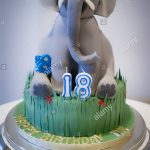 Elephant Birthday Cakes Celebratory18th Birthday Cake With Contributions To Asian Elephant