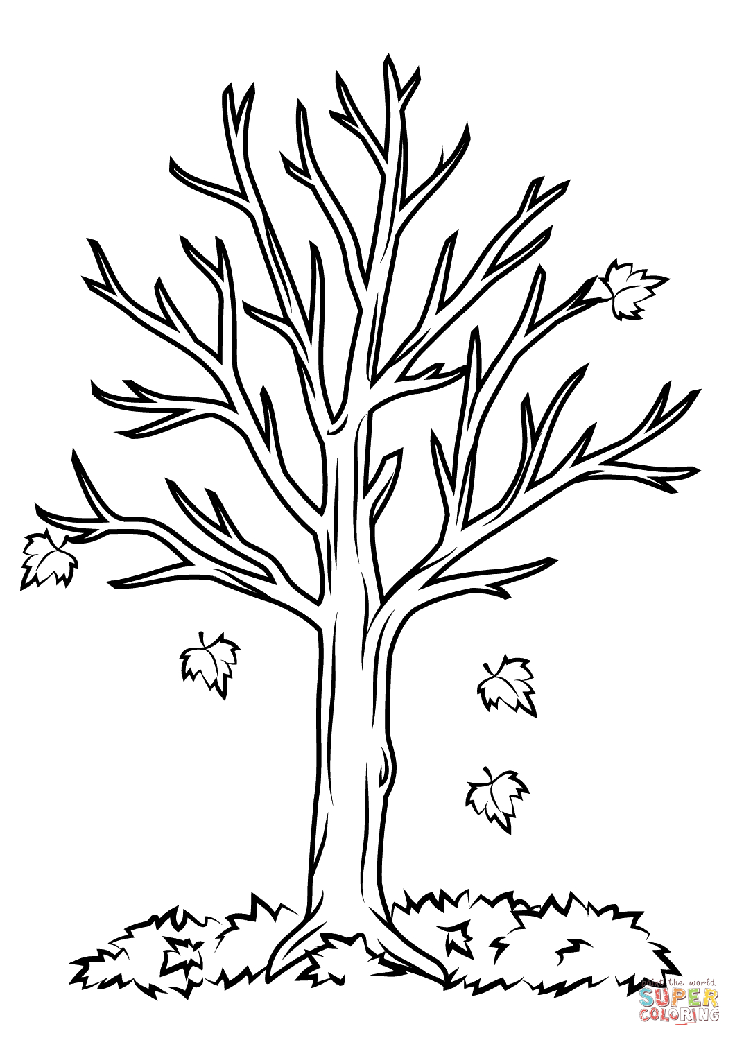27+ Amazing Picture of Fall Tree Coloring Pages