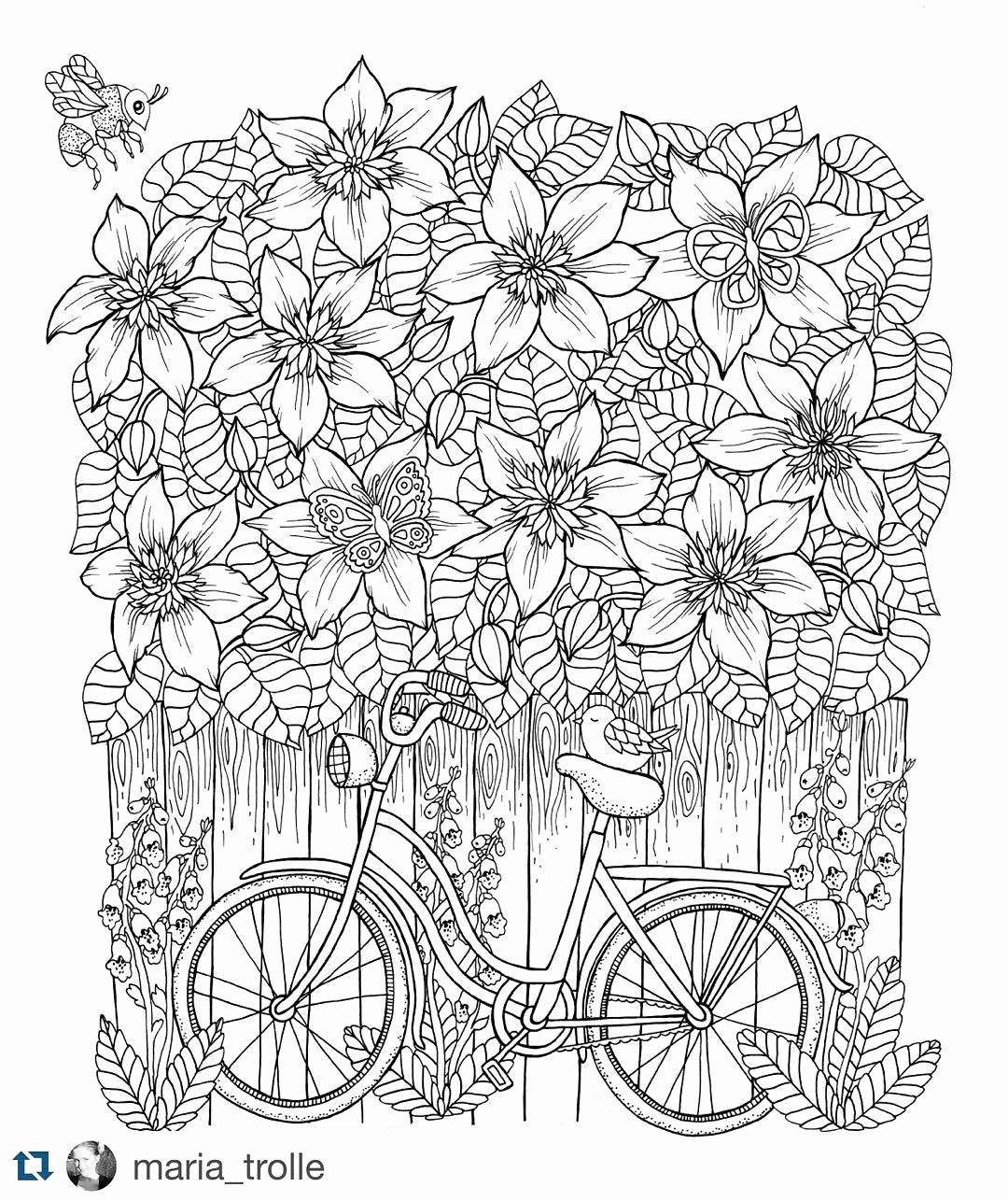 Free Adult Coloring Pages Free Adult Coloring Inspirational Photos Free Download Coloring
