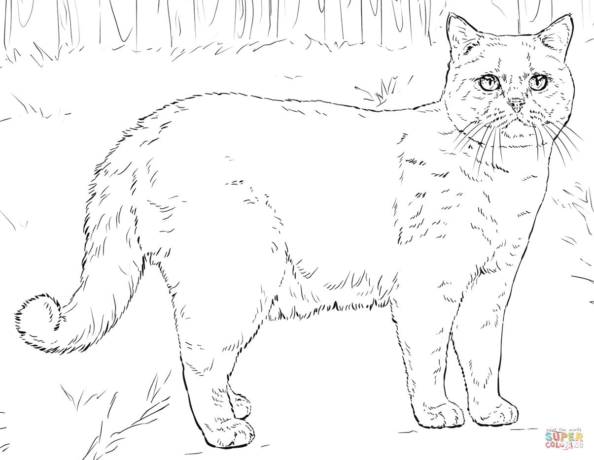 Wonderful Image of Free Cat Coloring Pages