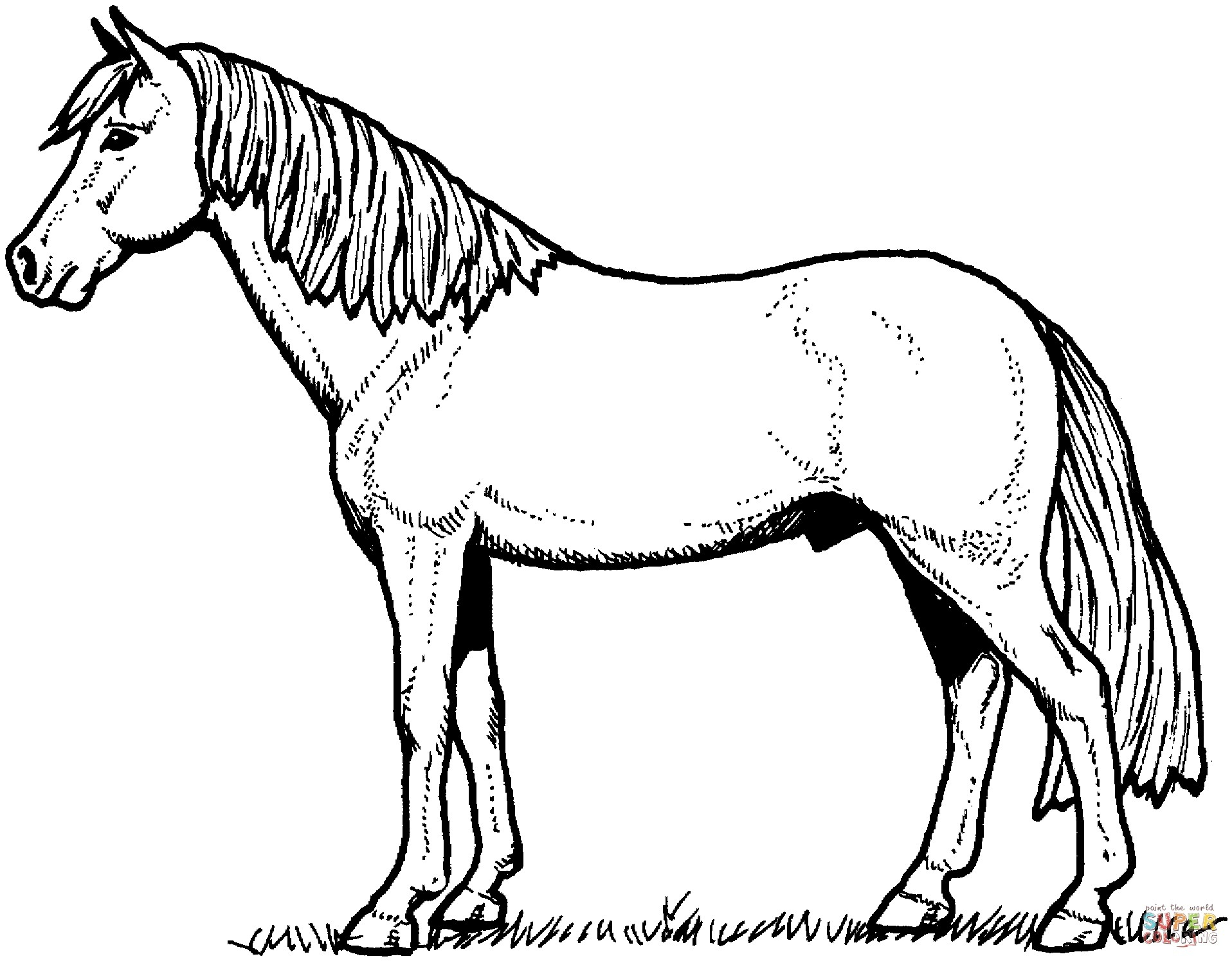 Free Horse Coloring Pages Dala Horse Coloring Page Best Of Coloring Pages And Horses Nouveau