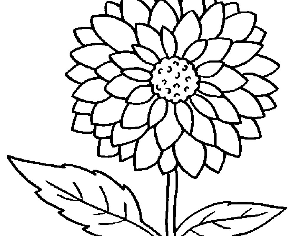 Free Printable Flower Coloring Pages Color Sheet Flower Yaman Startflyjobs Co Coloring Sheets Stupendous