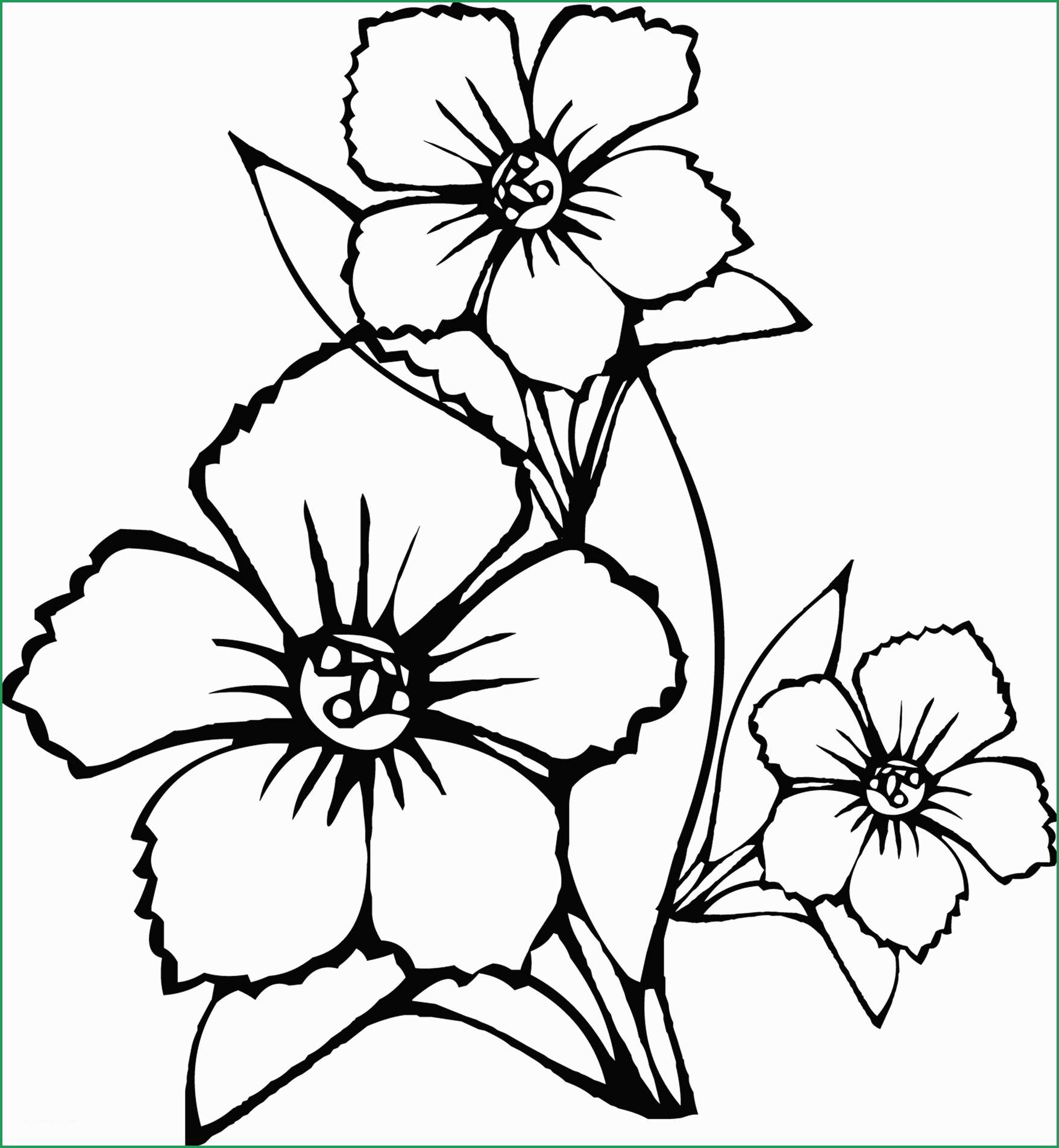 Free Printable Flower Coloring Pages Fabulous Models Of Flower Coloring Pages Coloring Pages
