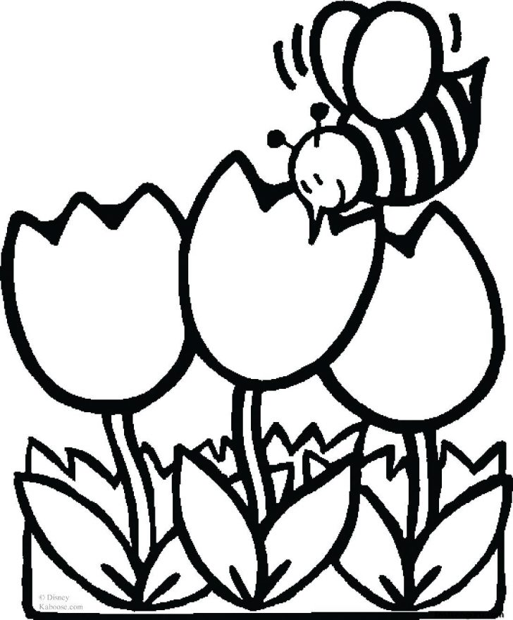 Free Printable Flower Coloring Pages Flower Coloring Pages Free Download Best Flower Coloring Pages On