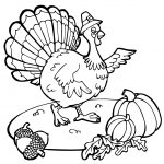 Free Printable Thanksgiving Coloring Pages Free Printable Thanksgiving Turkey Coloring Pages At Getdrawings