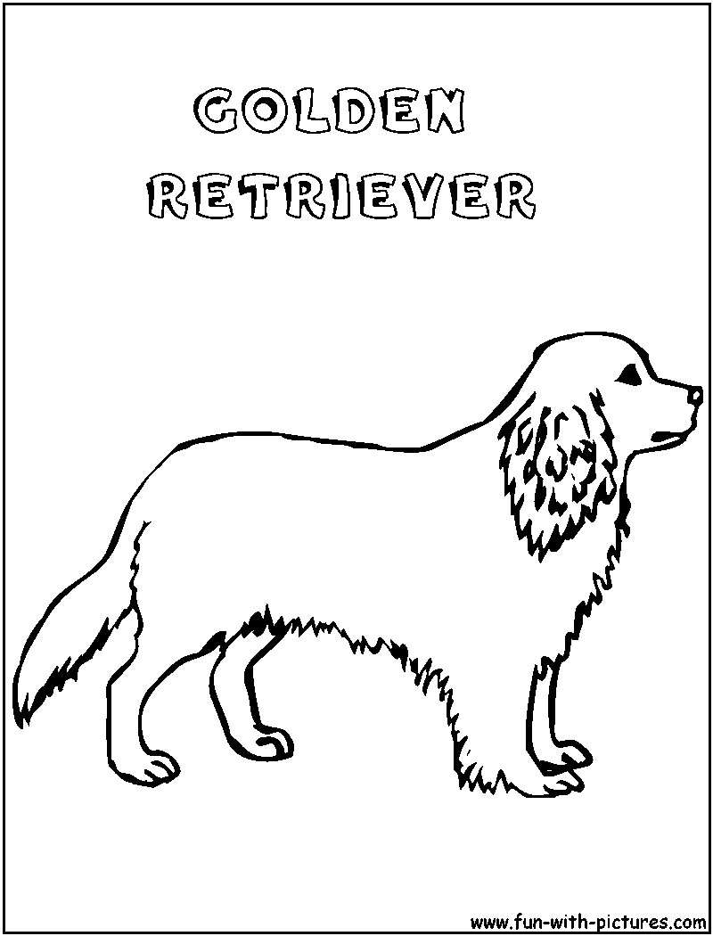 Golden Retriever Coloring Page Golden Retriever Coloring Pages Lovely To Best Of Page Mofassel Me
