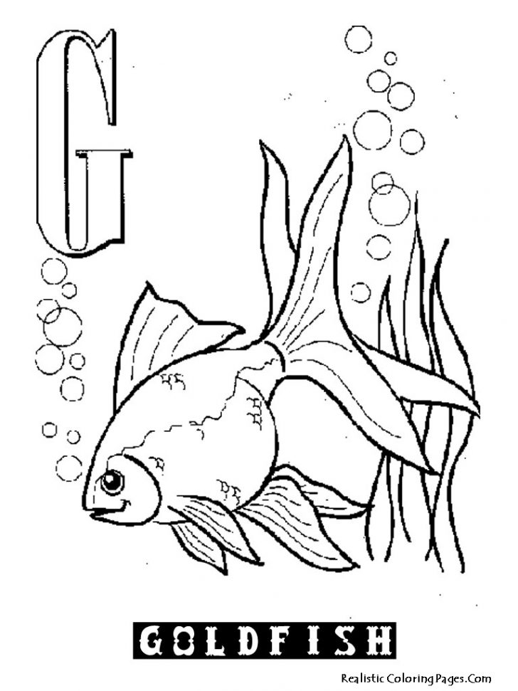 Goldfish Coloring Page G Is For Goldfish Coloring Page Printable Educations For Kids