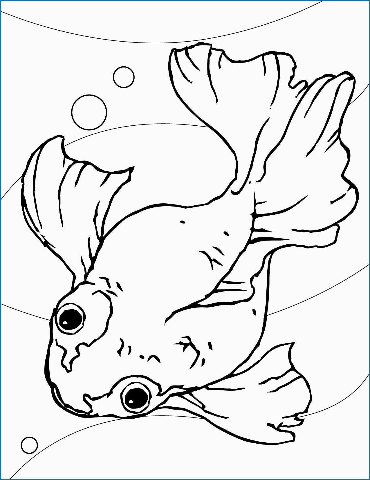 Goldfish Coloring Page Goldfish Coloring Page Lovely Free Printable Fish Coloring Pages For