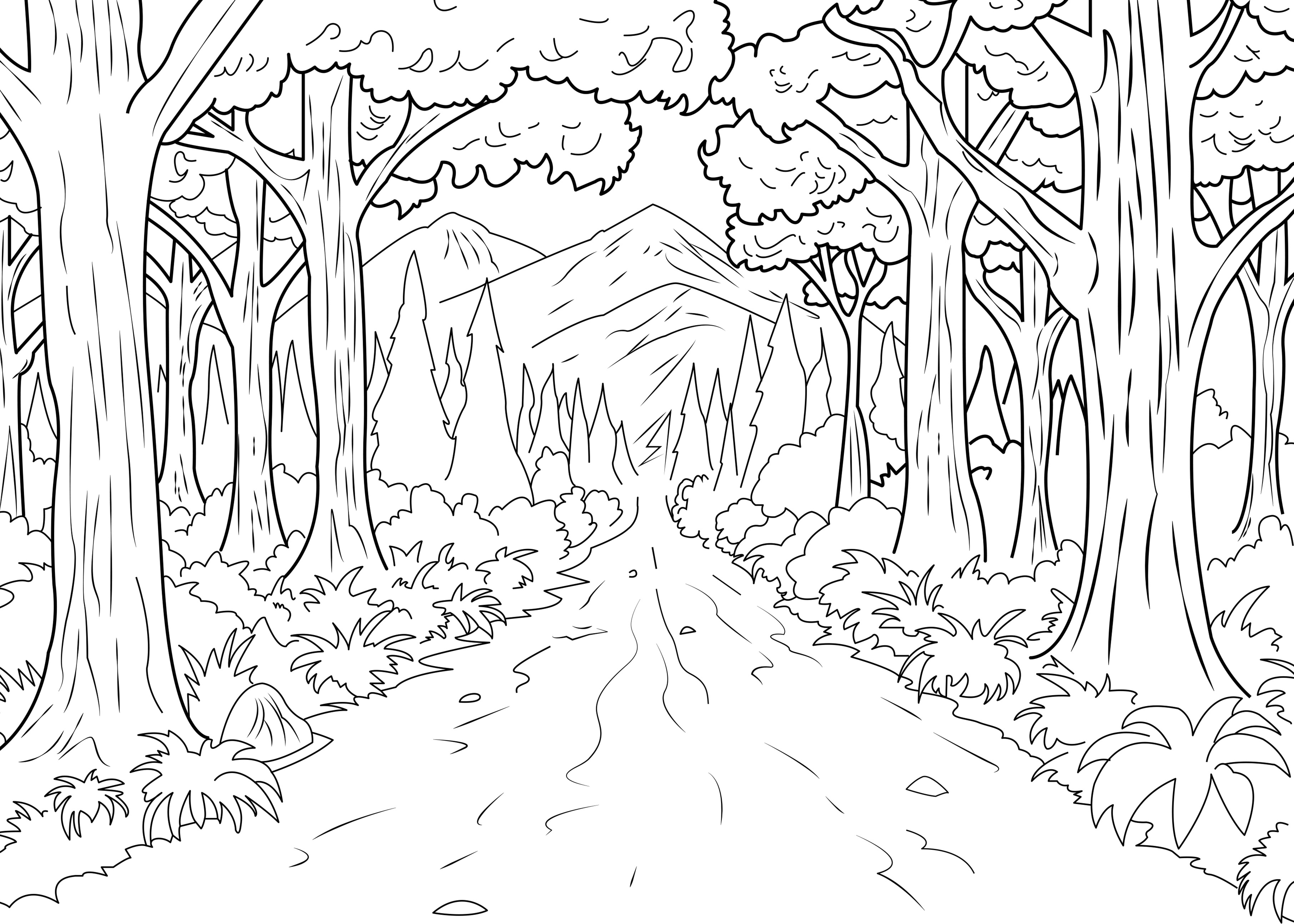 Jungle Coloring Pages Forest Celine Jungle Forest Adult Coloring Pages