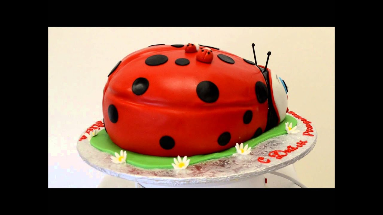Ladybug Birthday Cake Lady Bug Cake Presentation Custom Cake Ladybug Birthday Cake