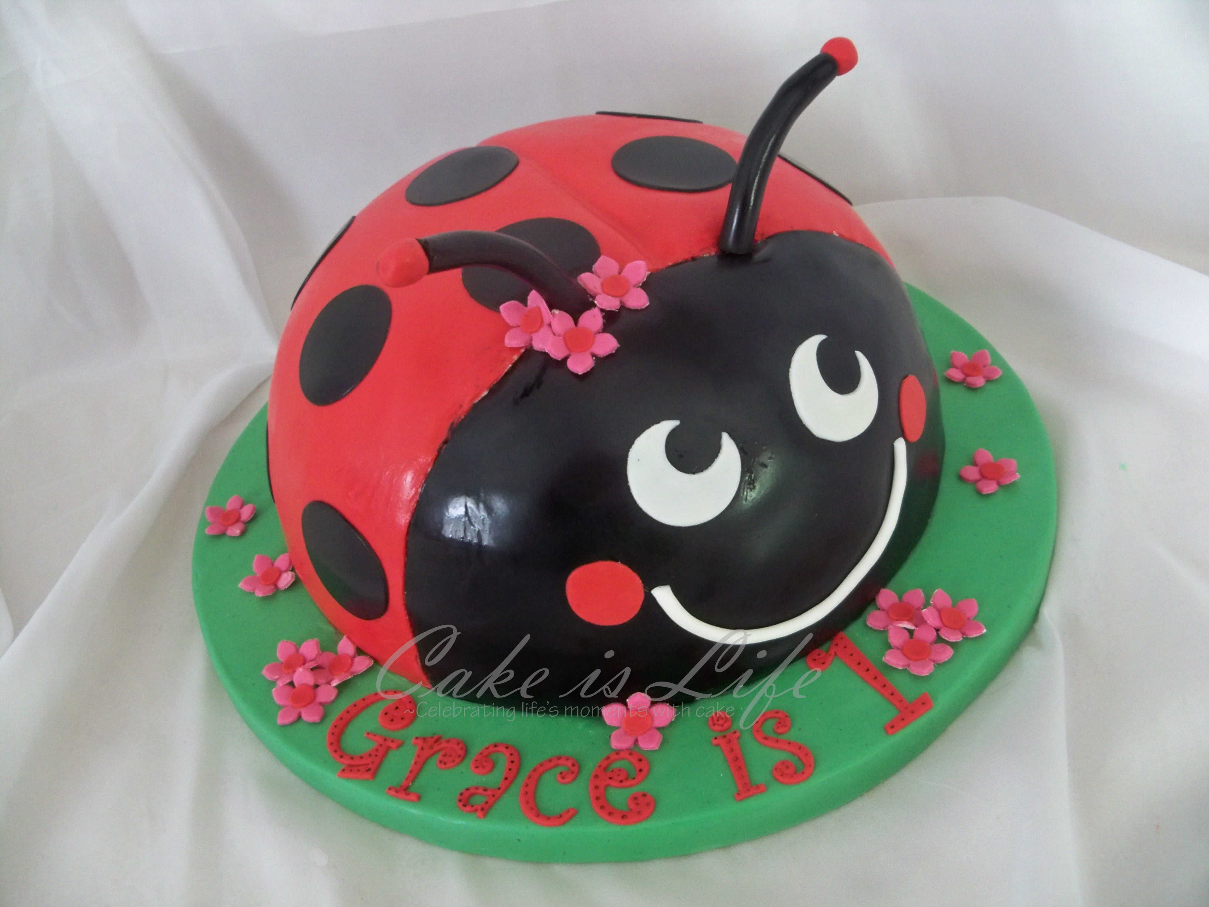 Ladybug Birthday Cake Ladybug Birthday Cake Cake Is Life