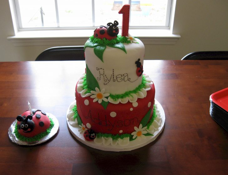 Ladybug Birthday Cake Ladybug Cakes Decoration Ideas Little Birthday Cakes
