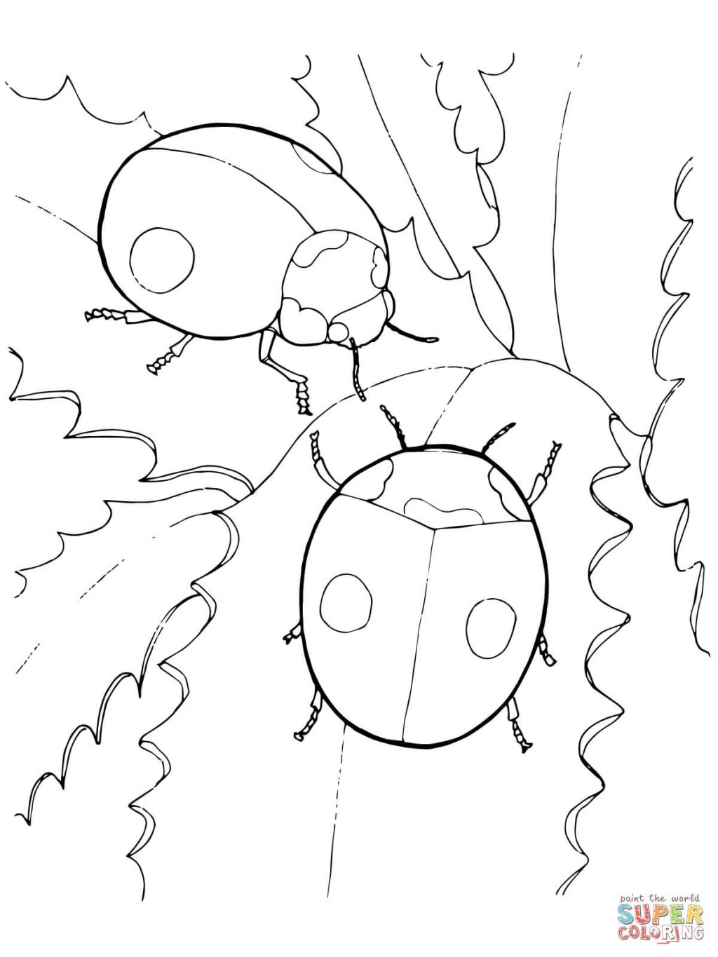 Ladybug Coloring Page Ladybug Coloring Page Colouring Sheets No Spots Free Pages Printable