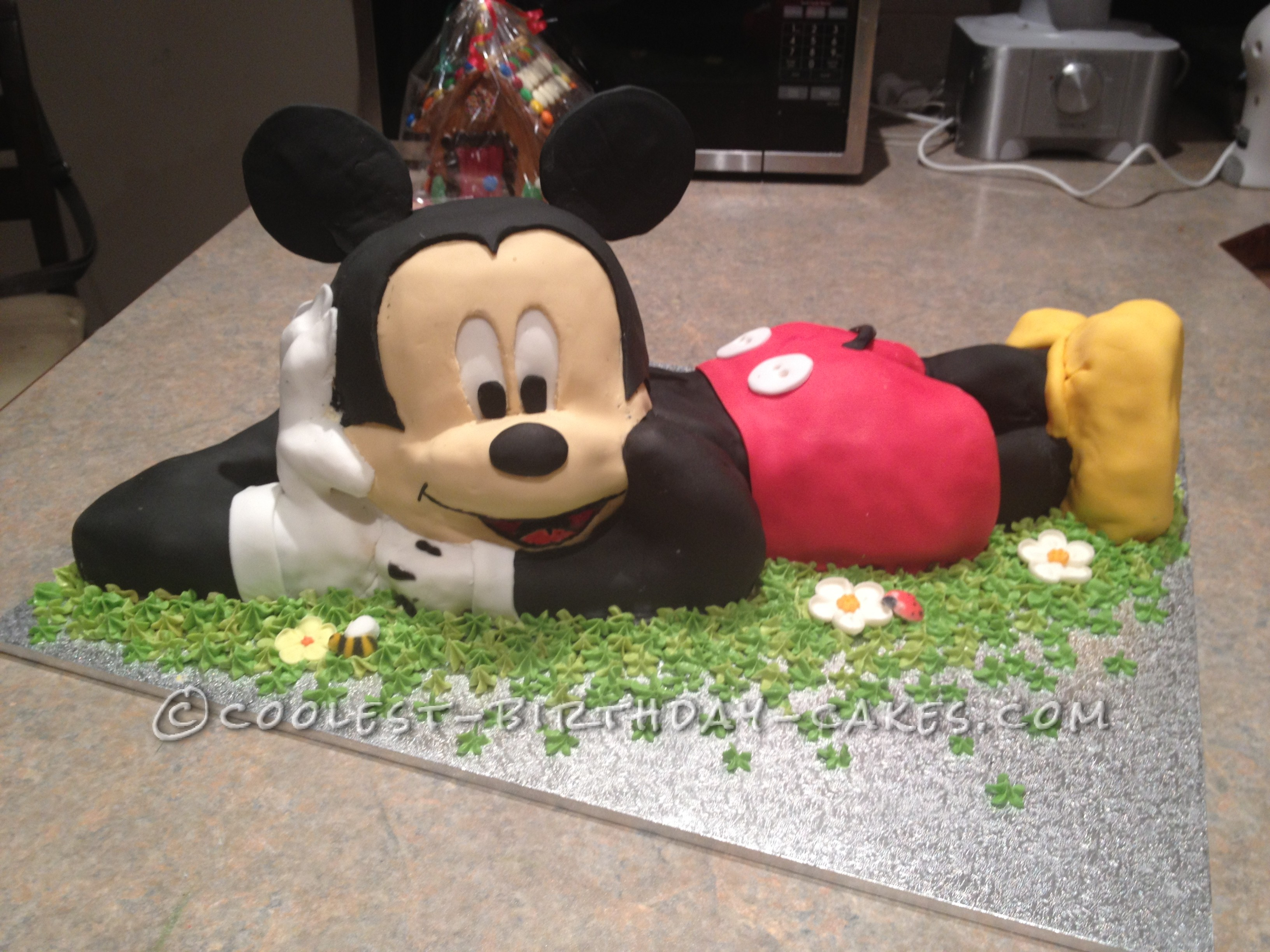 Mickey Mouse Birthday Cakes Coolest 3d Mickey Mouse Cake For A 2nd Birthday