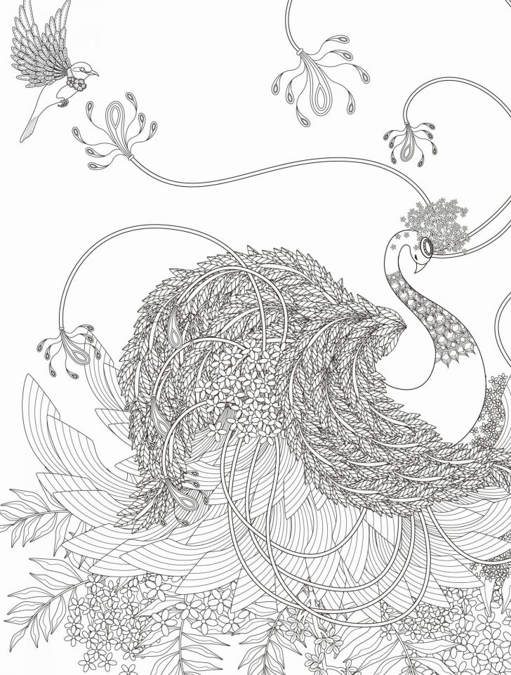Oriental Trading Coloring Pages Oriental Trading Coloring Pages Cool Photos Magneto Coloring