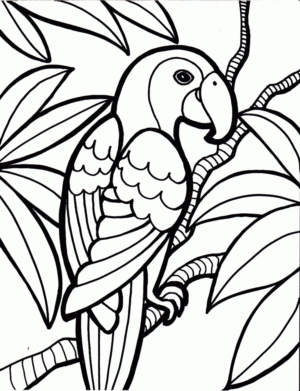 Parrot Coloring Pages Bird Coloring Pages Online Valid Bonanza Bird Colouring In Parrot