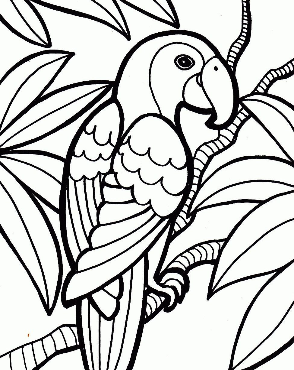 Parrot Coloring Pages Free Printable Parrot Coloring Pages For Kids In Page Napisy Me
