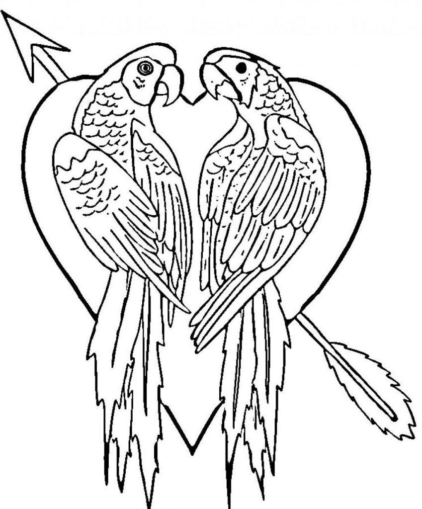 Parrot Coloring Pages Free Printable Parrot Coloring Pages For Kids