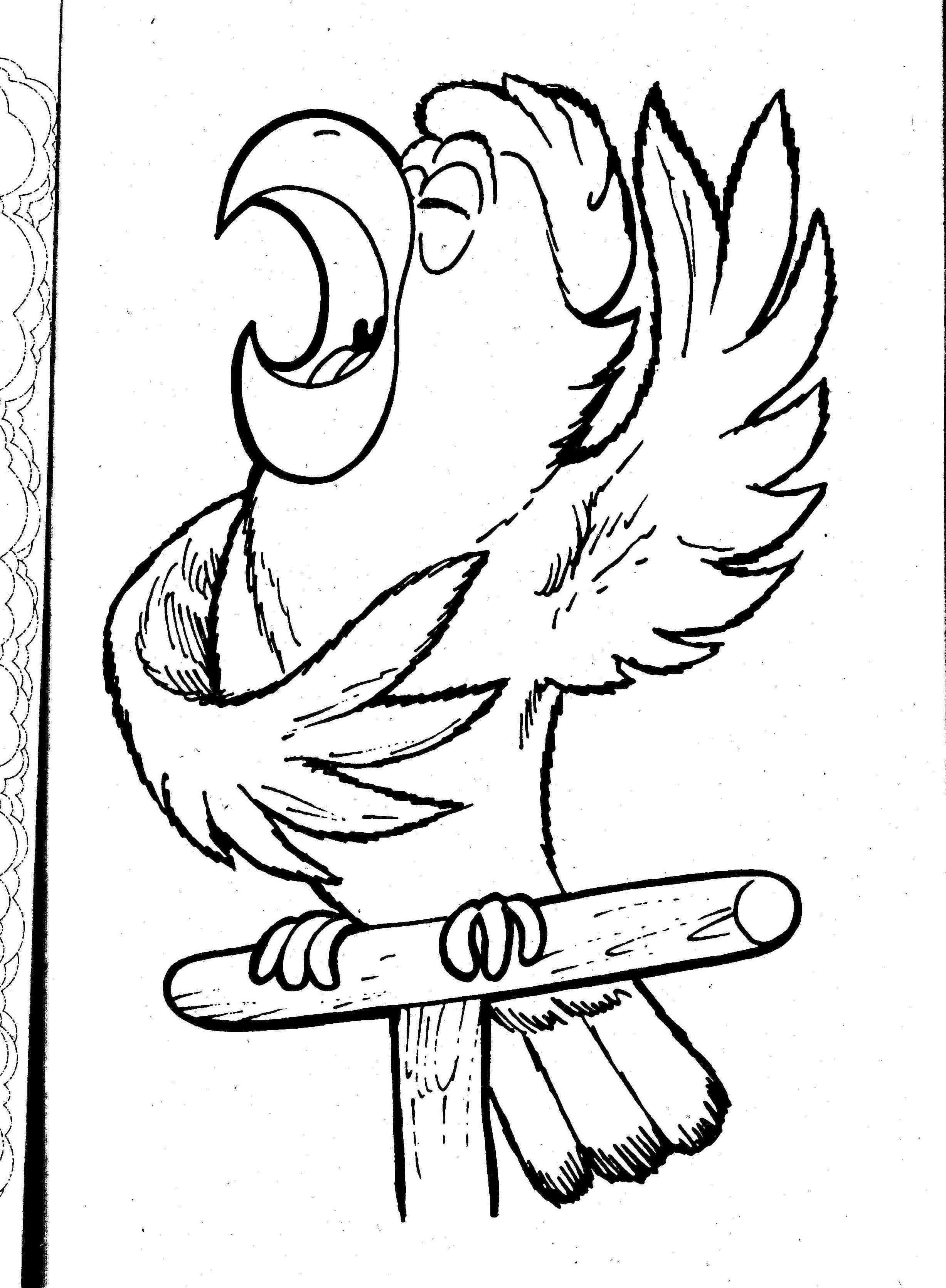 Parrot Coloring Pages Parrot 52 Animals Printable Coloring Pages