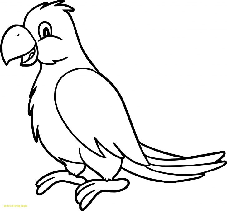 Parrot Coloring Pages Parrot Coloring Page Zoloftonline Buy
