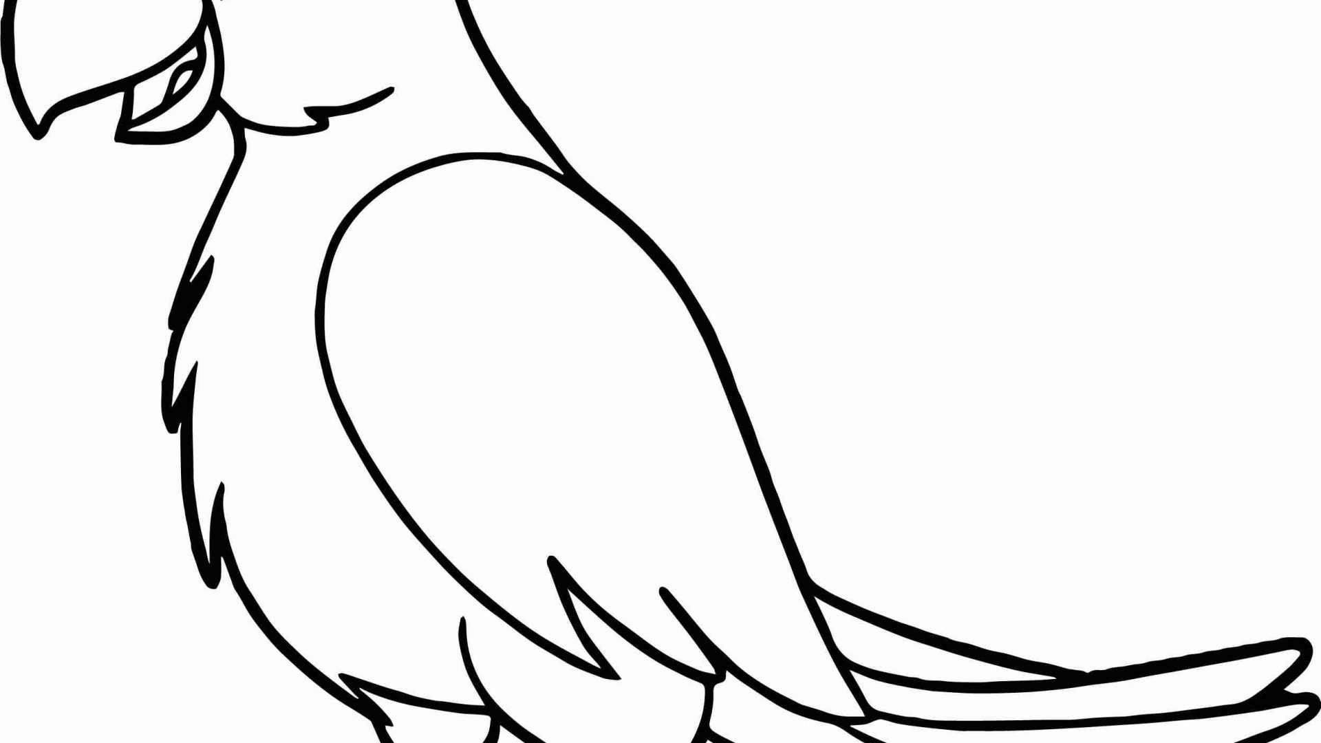 Parrot Coloring Pages Reduced Parrot Colouring Pagesird Coloring Page With Free For