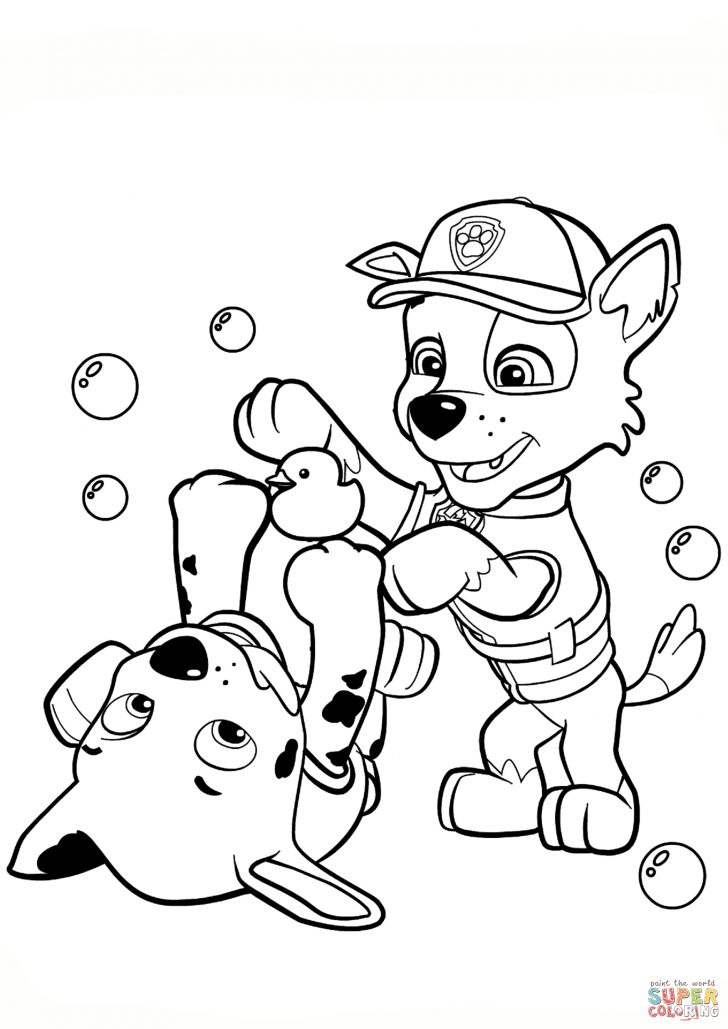 Paw Patrol Coloring Pages Paw Patrol Rocky And Marshall Coloring Page Free Printable