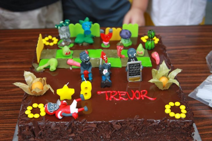 Plants Vs Zombies Birthday Cake Vals Passion Cakes Art Wines And More Homemade Plants Vs