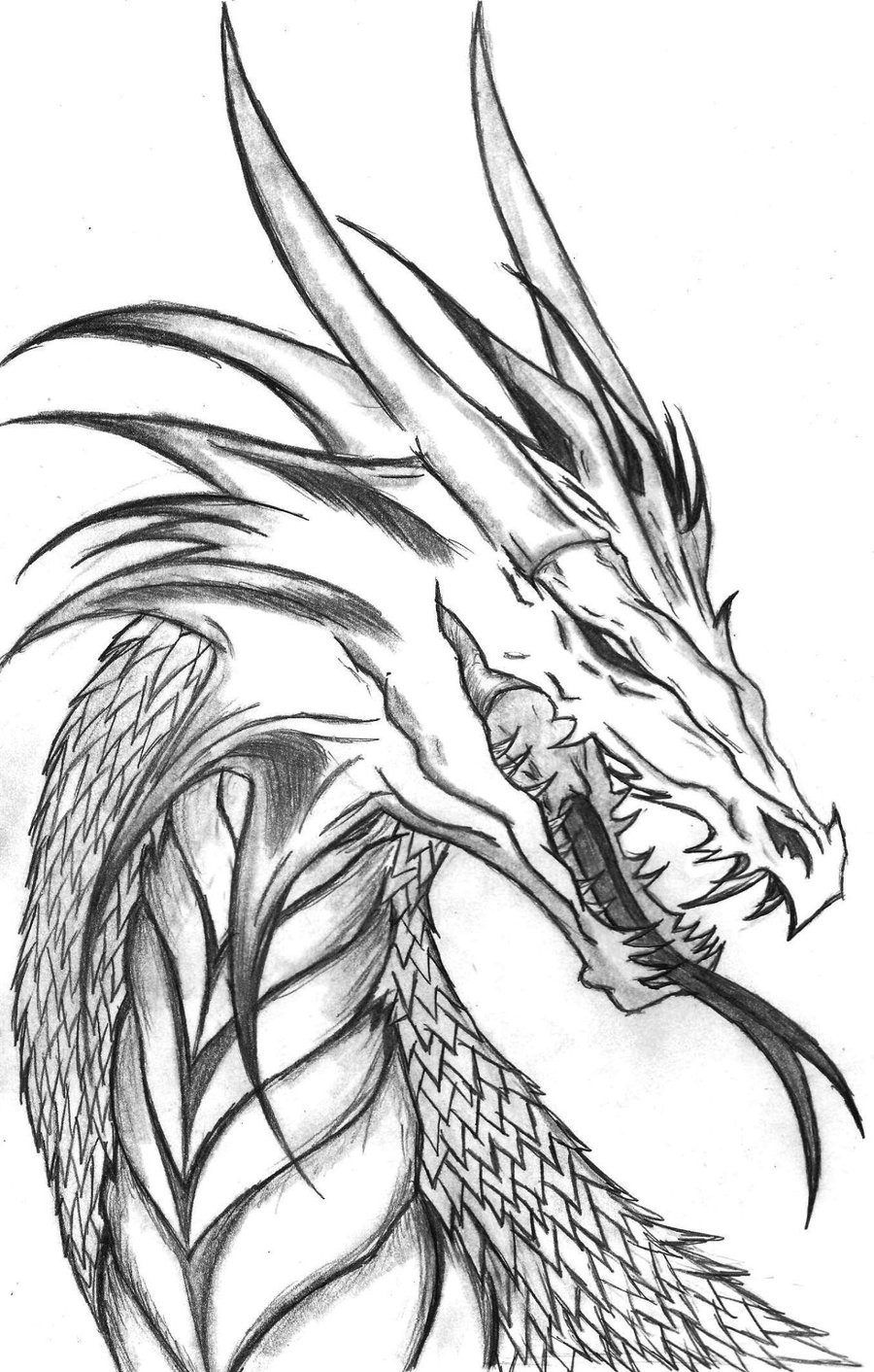 Printable Dragon Coloring Pages Realistic Wateron Coloring Pages Free Printable For Adults Only