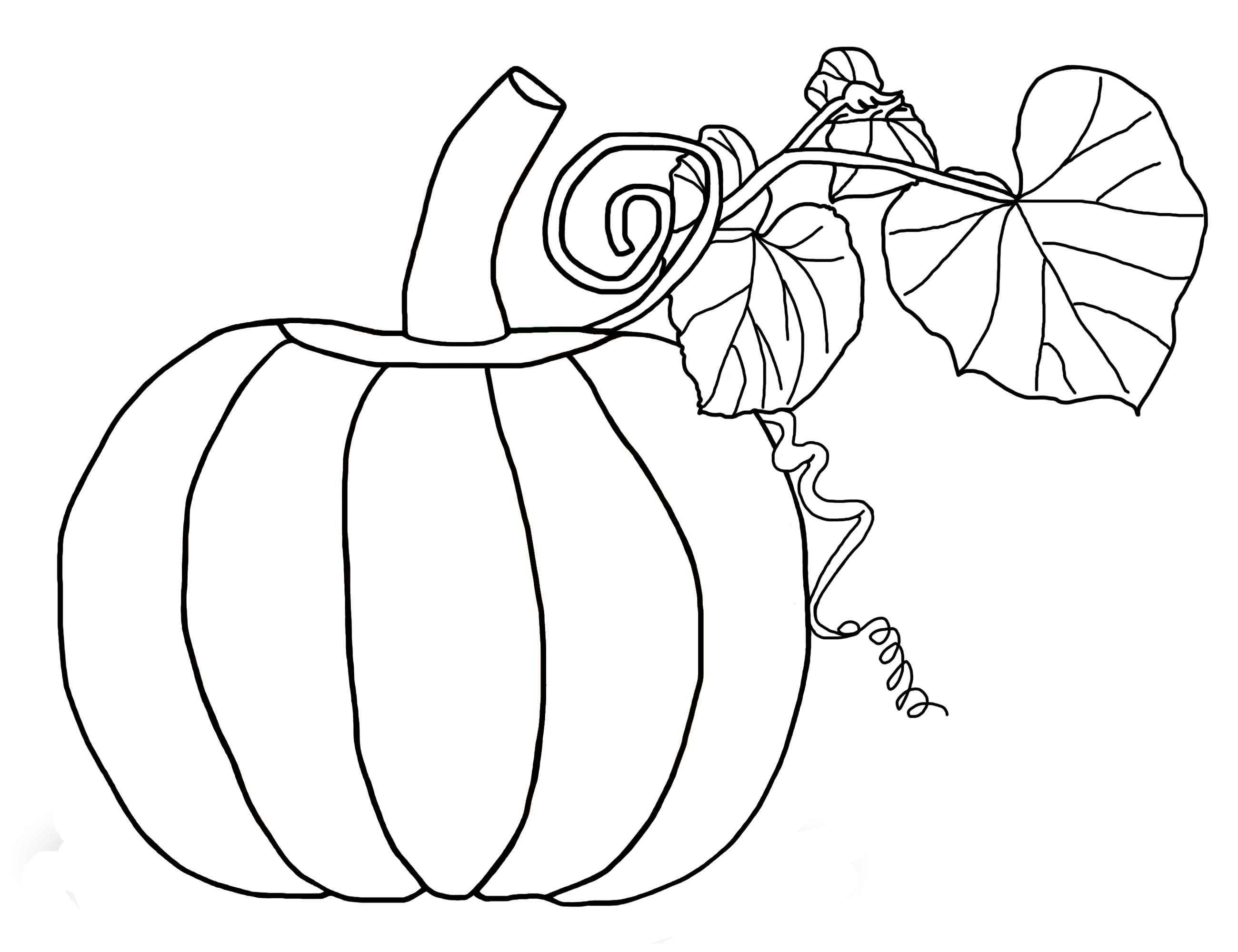 Printable Pumpkin Coloring Pages Free Pumpkin Coloring Pages For Kids