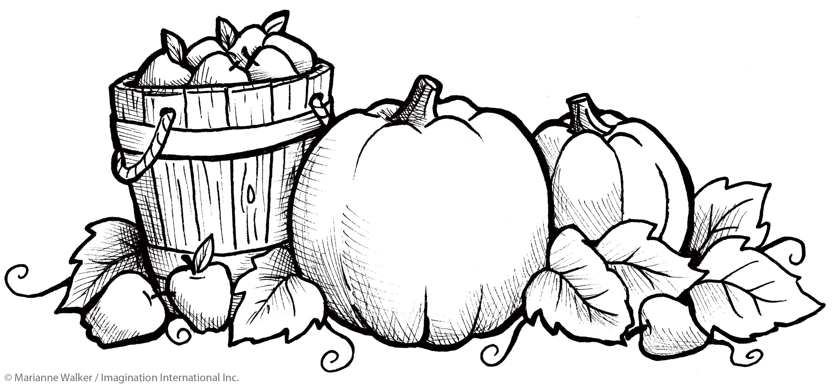 Printable Pumpkin Coloring Pages Pumpkin Coloring Pages To Print Beautiful Photography Halloween